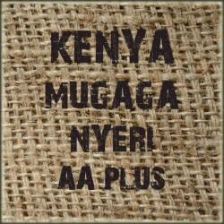 Kenya Mugaga Nyeri AA Plus