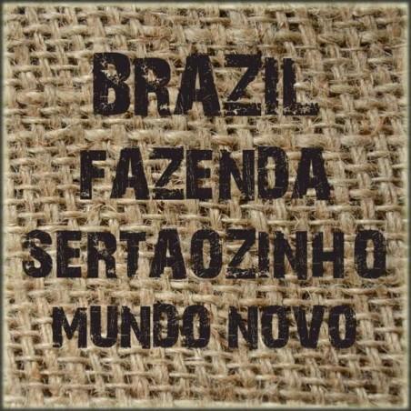 Brazil Fazenda Sertãozinho Mundo Novo