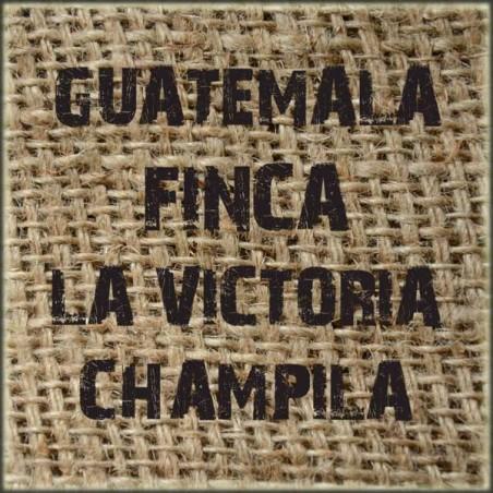 Guatemala Finca La Victoria Champila
