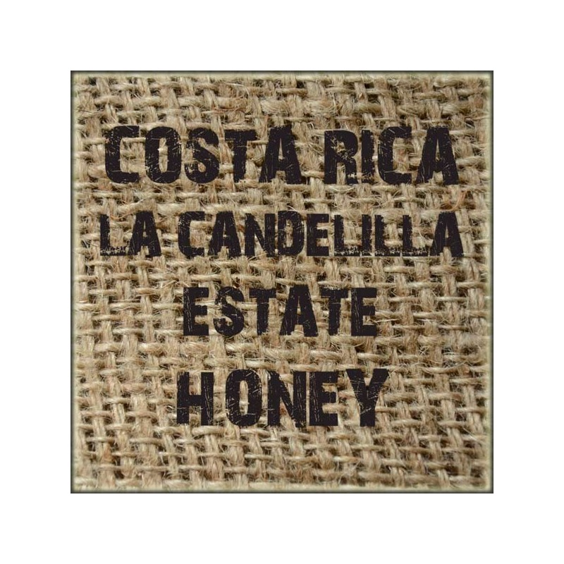 Costa Rica La Candelilla Estate Honey