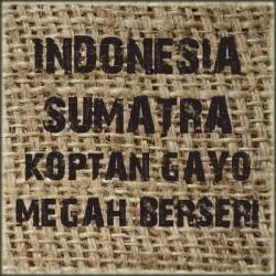 Indonesia Sumatra Gayo Megah Berseri
